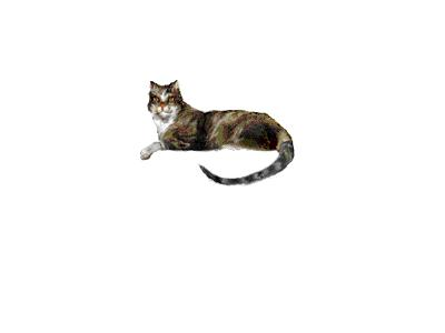 Logo Animals Cats 012 Animated