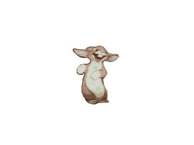 Logo Animals Rabbits 008 Animated
