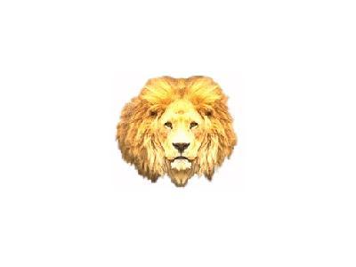 Logo Animals Jungle 006 Color