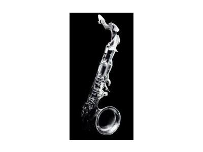 Logo Music Brass 028 Color