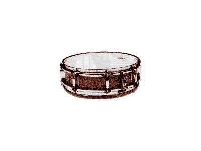Logo Music Drums 029 Color