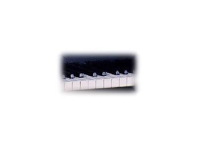 Logo Music Keyboards 026 Color