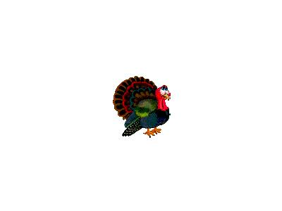 Greetings Turkey04 Animated Thanksgiving