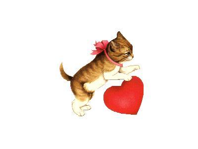 Greetings Cat01 Color Valentine