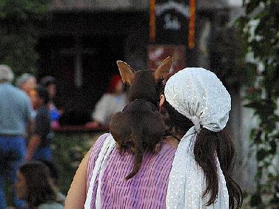 Photo Dog And Woman Animal