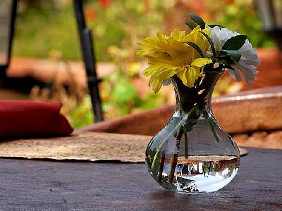Photo Flower And Vase Flower