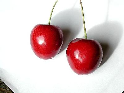 Photo Cherry 16 Food