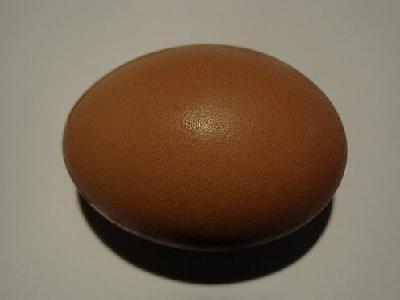 Photo Egg 5 Food