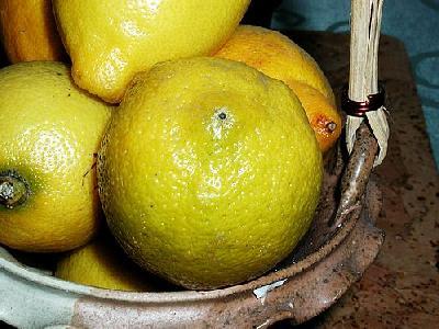 Photo Lemon 4 Food