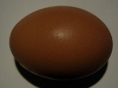 Photo Egg 4 Food