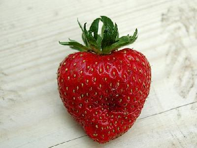 Photo Strawberry Glass 1 Food
