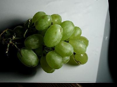 Photo Vine 5 Food