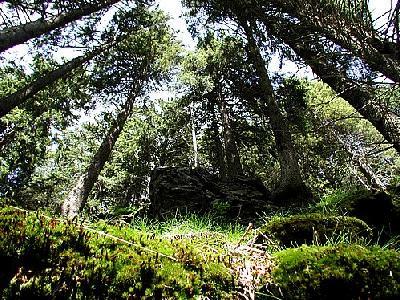 Photo Mountain 118 Landscape