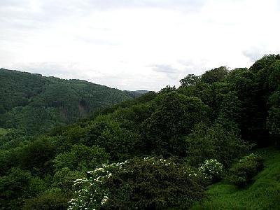 Photo Mountain 120 Landscape