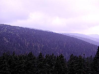 Photo Mountain 61 Landscape