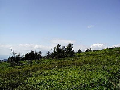 Photo Mountain 96 Landscape