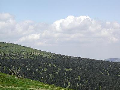 Photo Mountain 73 Landscape