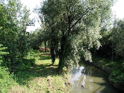Photo River 8 Landscape