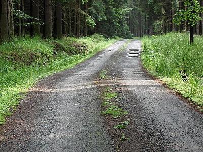 Photo Road 5 Landscape