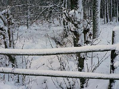 Photo Snowy Wood Fence Landscape