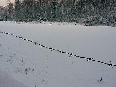 Photo Wire Fence 2 Landscape