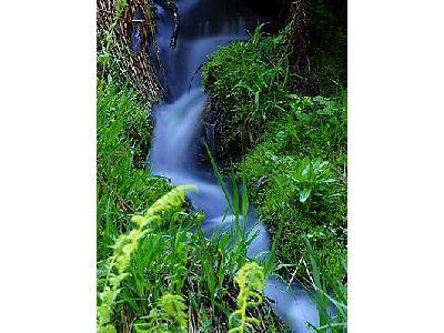 Photo Stream 5 Landscape