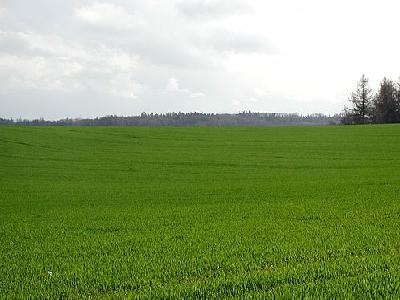 Photo Field 28 Landscape
