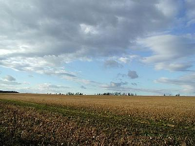 Photo Field 7 Landscape