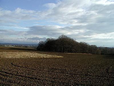 Photo Field 9 Landscape