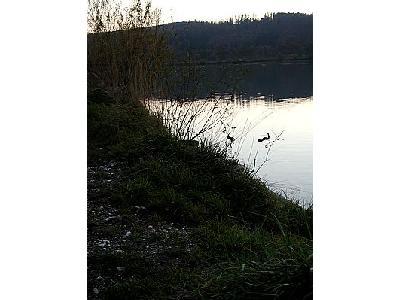 Photo Lake 57 Landscape
