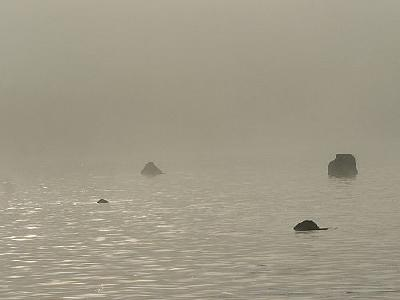 Photo Lake Rocks In Morning Mist Landscape