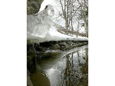 Photo Melting Lake Side Landscape