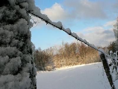Photo Snowy Barbwire Fence Landscape