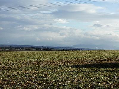 Photo Field 4 Landscape