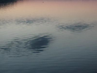 Photo Lake 34 Landscape