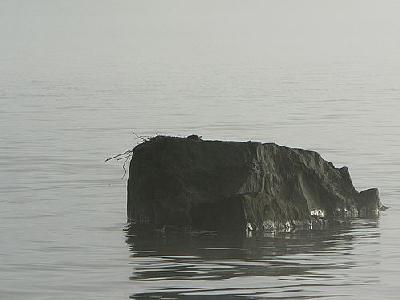 Photo Lake Rock In Morning Mist Landscape