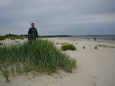 Photo On The Beach Ocean