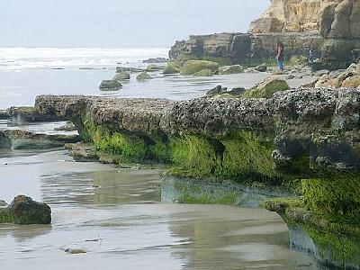 Photo Ocean Ocean
