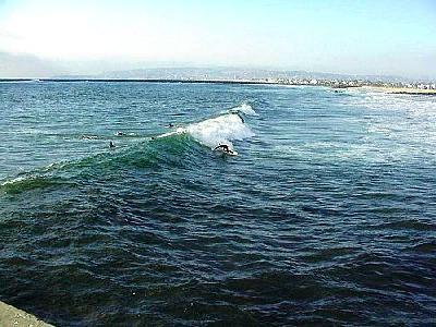 Photo Surfing At Ocean Beach Ocean