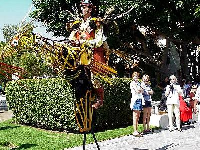 Photo Stilt Bird Guy People