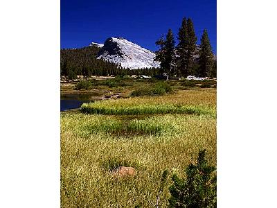 Photo Yosemite National Park Travel