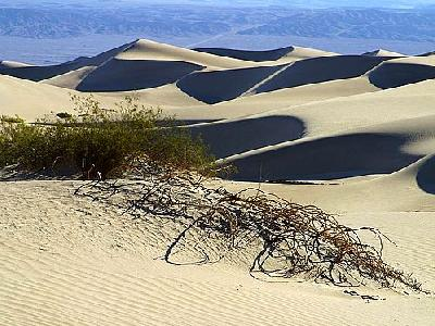 Photo Sand Dunes 7 Travel