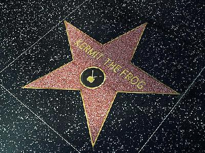 Photo Hollywood Stars Kermit The Frog Travel