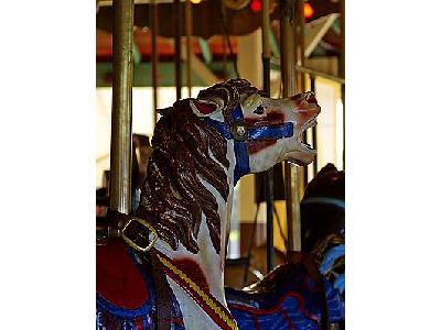 Photo Carousel Travel