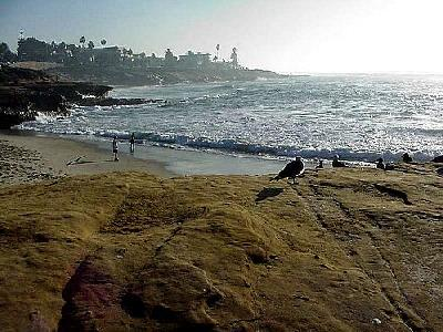 Photo La Jolla Cove 6 Travel