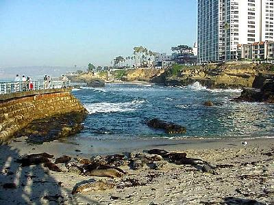 Photo La Jolla Cove 9 Travel