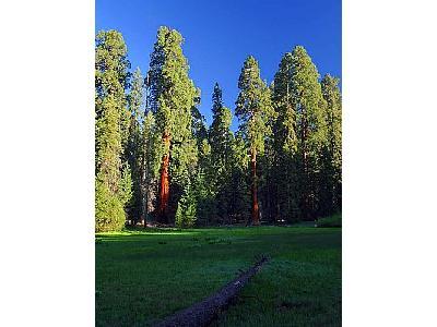 Photo Round Meadow Travel