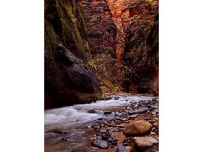 Photo Zion Narrows Travel