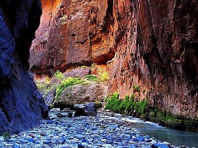 Photo Zion Narrows 11 Travel