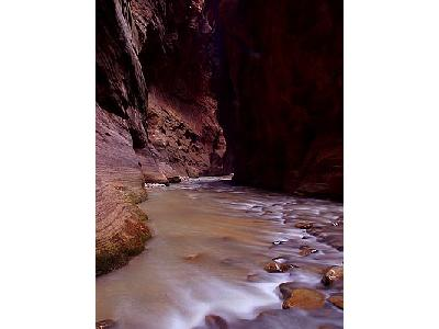 Photo Zion Narrows 14 Travel